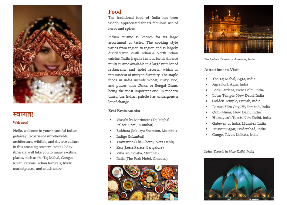 Travel Brochure India Project