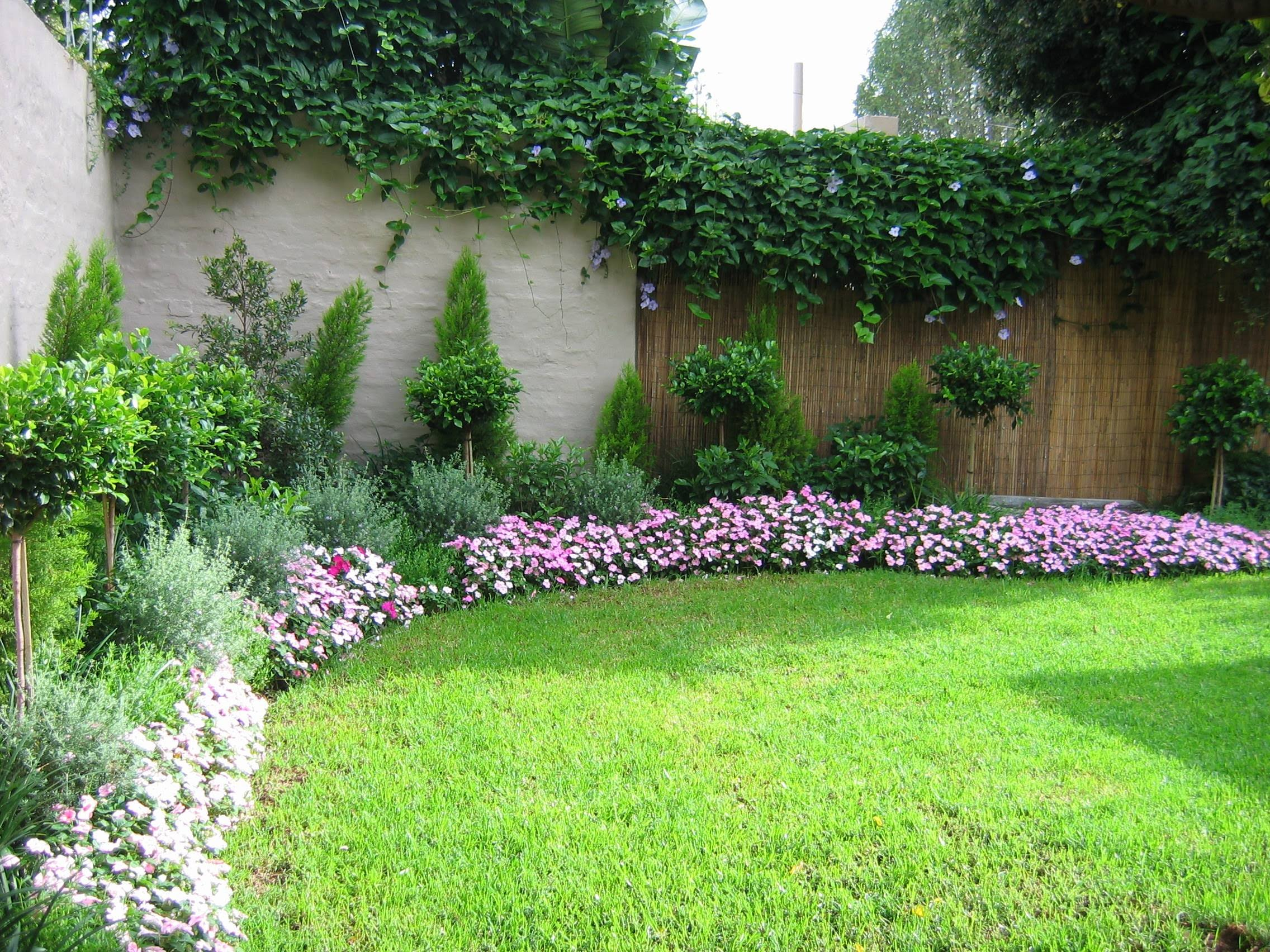 Indigoplan for Small garden landscape