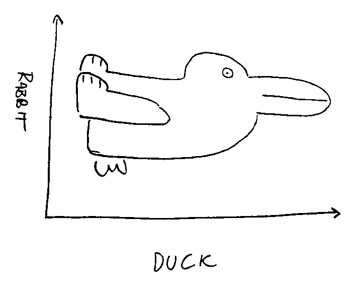 Rabbit-Duck