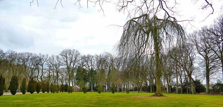 Aangeboden door: Stichting Microtoerisme InZicht Fotoblog Veenhuizen begraafplaats