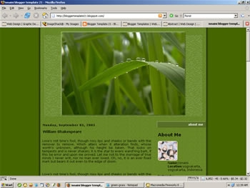 2 Column Blogger Template : Green Grass