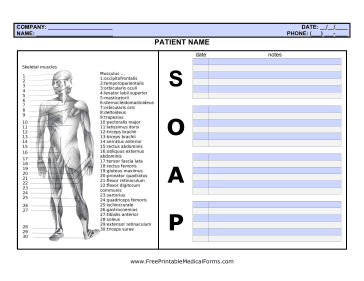 soap notes examples