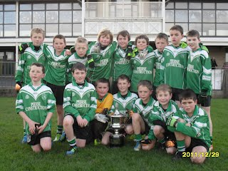 2011 winners - Lucan Sarsfields