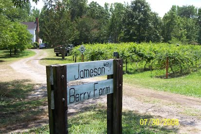 https://sites.google.com/site/jamesonberryfarm/Home/Jameson%20Berry%20Farm.jpg?attredirects=0