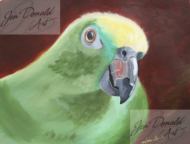 Colonial Beach Virginia art artist painting bird parrot macaw birds Jennifer Donald