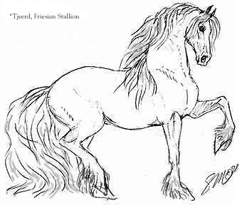 Friesian horse printing pictures coloring pages ~ horsepoems - kaimanawakidz