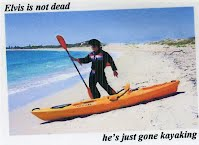 Elvis is not dead, he's just gone kayaking. Shoalwater Bay, Penguin Island, Weste