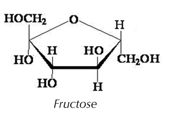 figure 2 the image above represents the cyclic structure of fructose