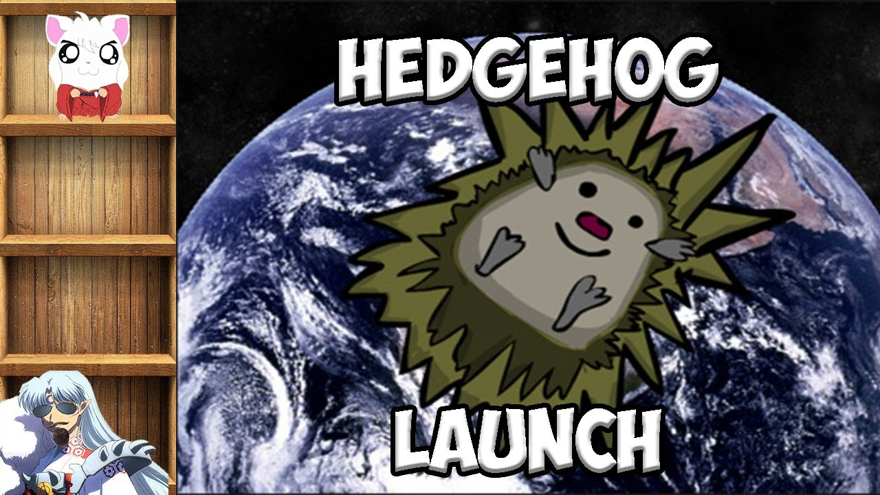 hedehog Launch