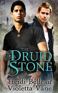 The Druid Stone cover