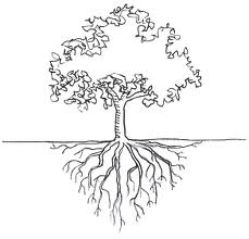 every word has its roots, whether they be latin or greek or something else   make a tree diagram for a word of your choice!