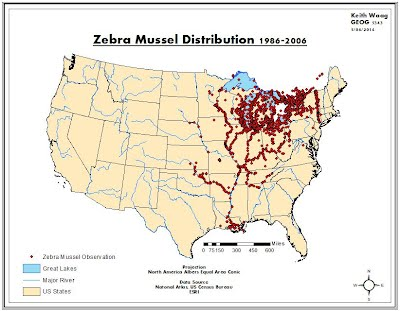 The Distribution Density And Hot Spot Analysis Of Zebra Mussels - Lake erie fishing hot spots map
