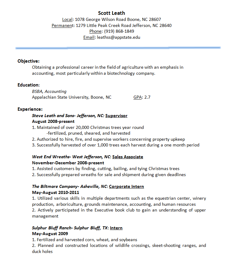 Resume And Personal Statement Leathss