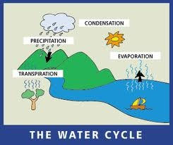 Adventure Through The Water Cycle For Kids