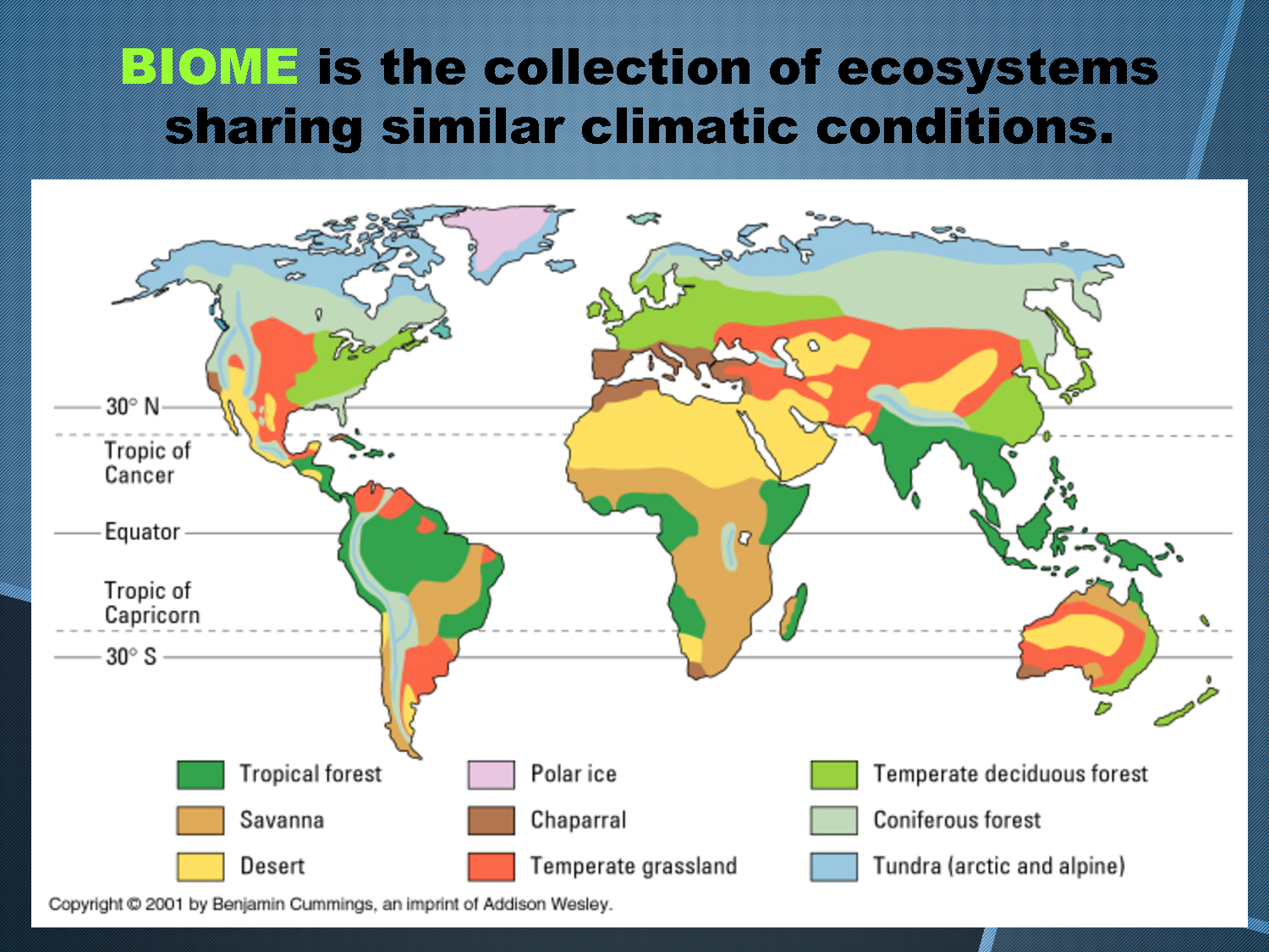 Map of Biome Locations in the World   Temperate Deciduous Forest