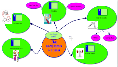 Concept Mapping   Physical Education