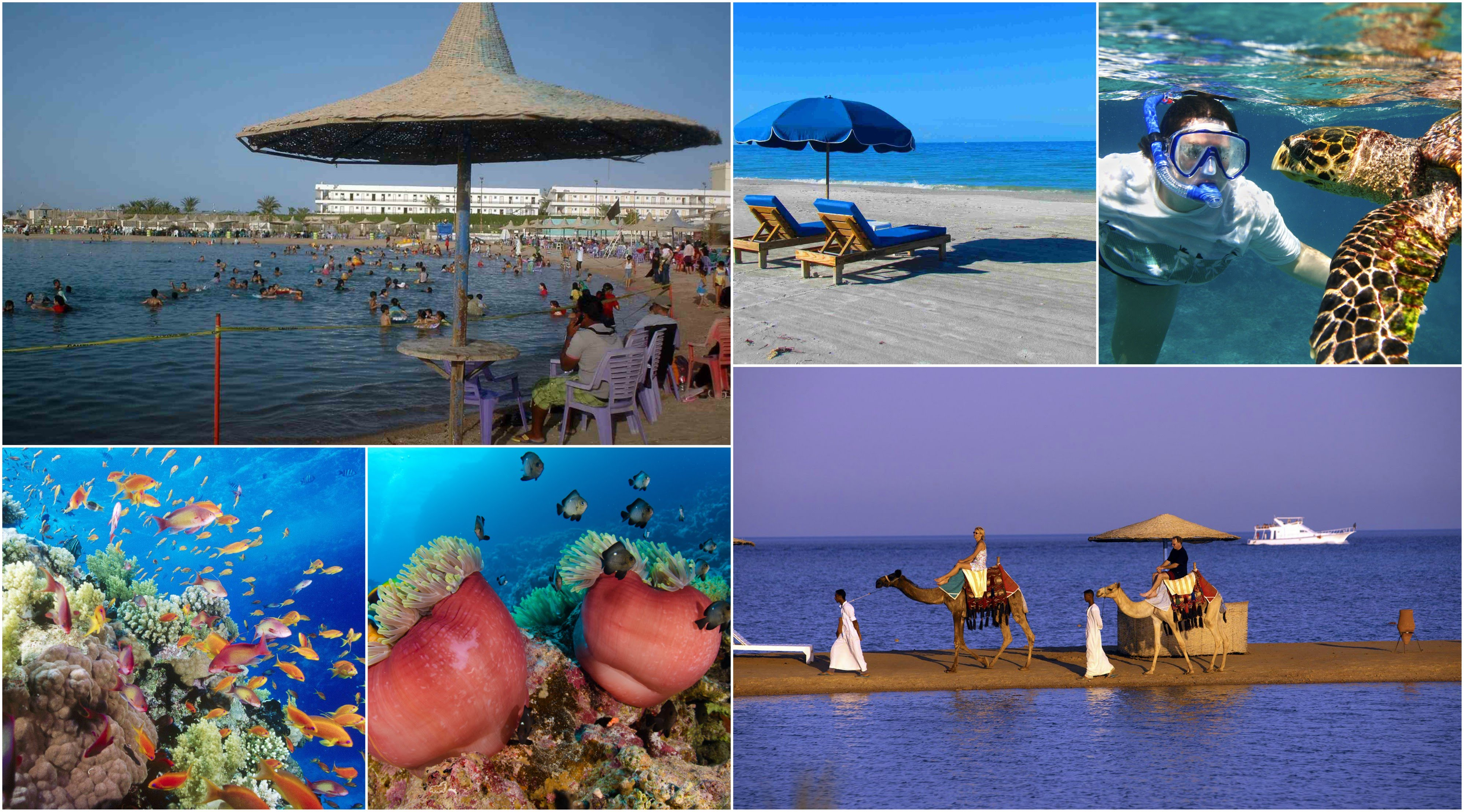 How Hurghada Red Sea Trip Conveys The True Satisfaction Of A Real Journey Maestro Egypt Tours