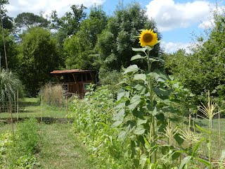 Family villa to rent SW France with pool and gardens