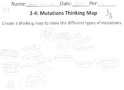 Worksheets Genetic Variation Worksheet standard 5 makana aloha lum pd 3 lrp this worksheet 2 4 mutations thinking map shows that it had meet benchmark because explains the different type of there what effects