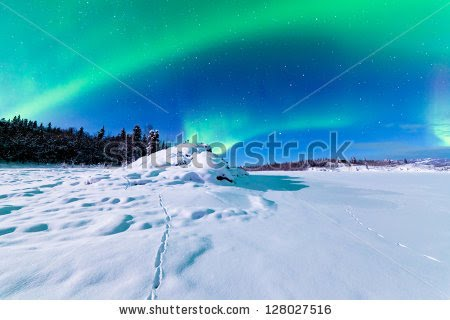 aurora borealis northern lights Sun