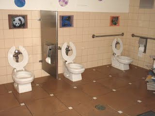 Three low toilets in a bathroom area with animal pictures above each toilet.