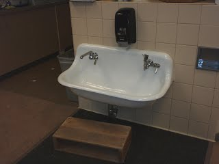 Low basin sink with water fountain, one faucet, and a soap dispenser.