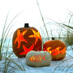 Image result for fall beach image