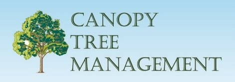 http://www.canopytreemanagement.co.uk./