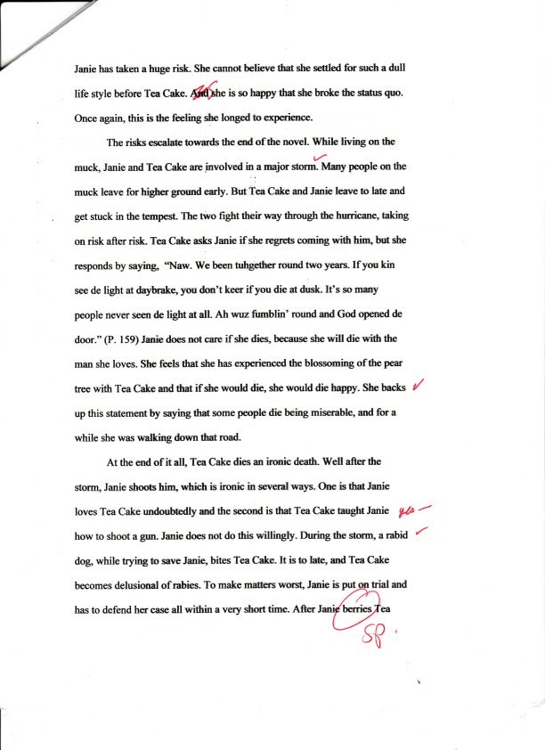 Humanities essays