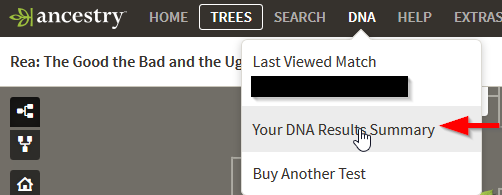 Searching Surnames in Ancestry DNA results - Mike Rea
