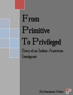 Story of An Indian American Immigrant - minmetbhu61