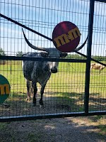 Welcome to M&M Farm