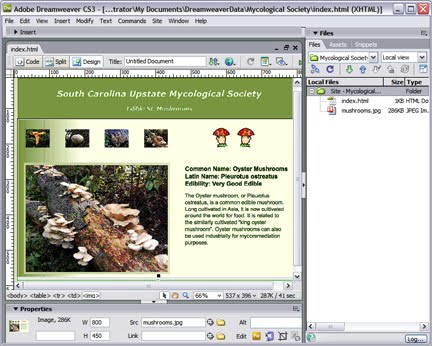 Dreamweaver Teaching With Technology