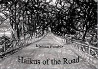 The Haikus of the Road