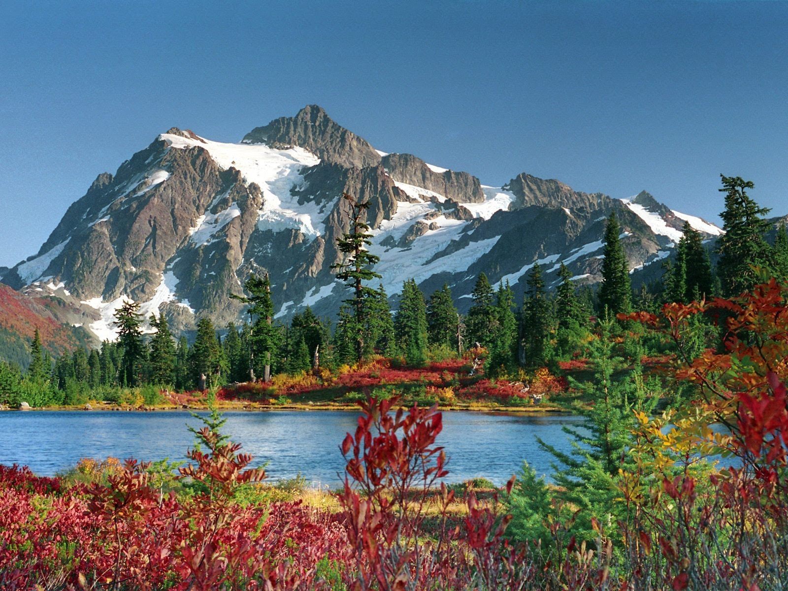 Northwestern Coniferous Forest - Biomes of The World