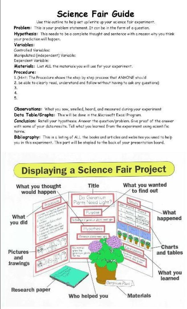 science project research paper example Choosing reliable sources in order to write a research paper, you first need to find out information about your topic this is called doing research.