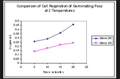 analysis and conclusion for cellular respiration An analysis of the rate of cellular respiration in a given organism 547 words 1 page an analysis of chemical reactions in cellular respiration 210 words 0 pages.