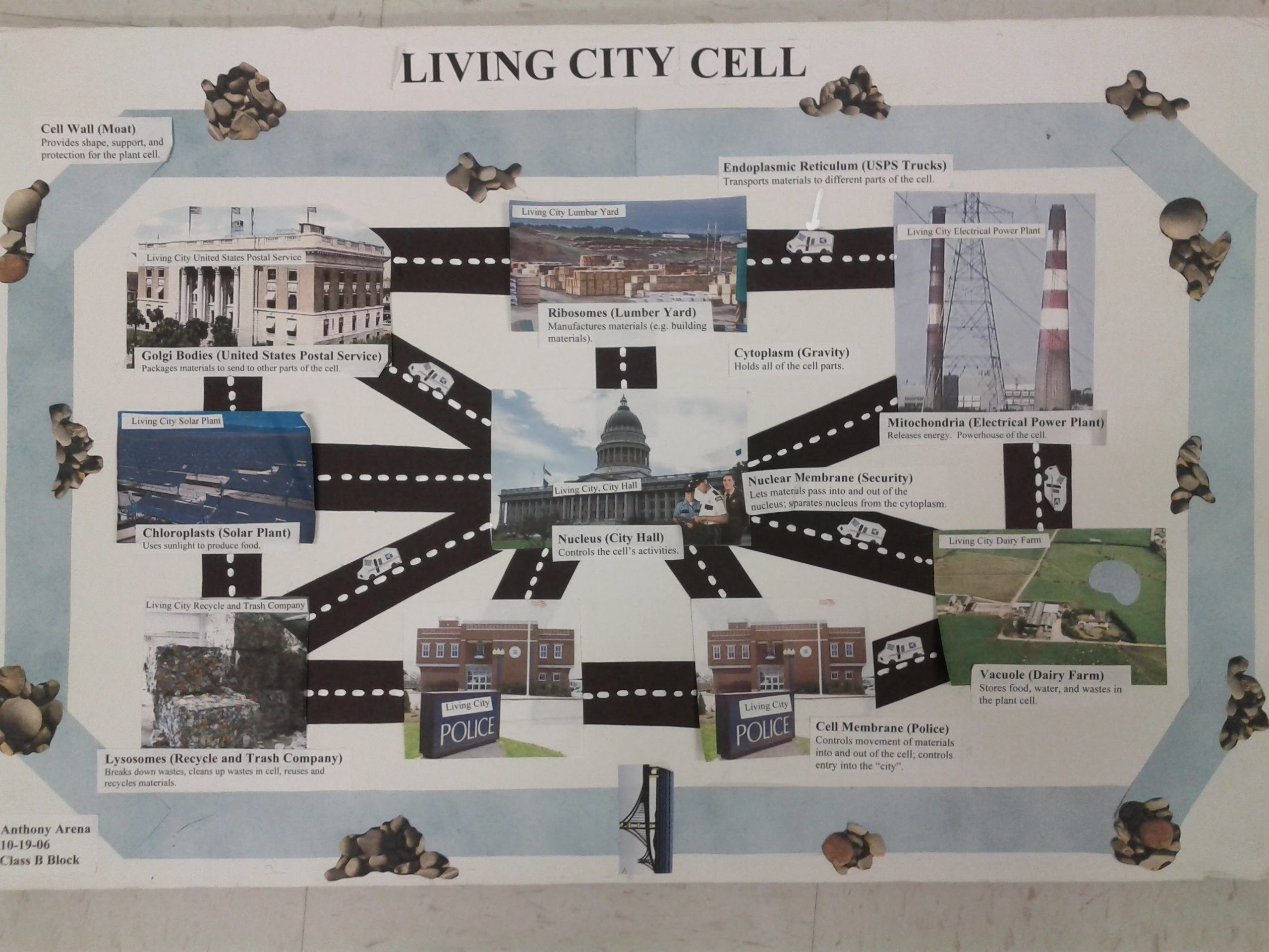 Cell City Project - Mrs. Watt's Life Science