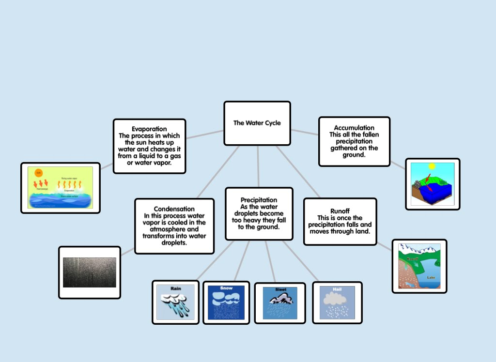 Concept Map Ms Moreno S Second Grade Water Cycle