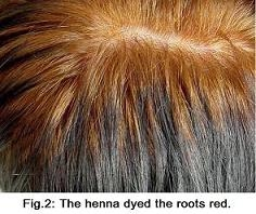 Sunnyvale Natural Hair Color Henna Indigo For Hair Dye Hair