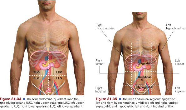 Abdomen nursing health assessment in addition practitioners often use certain landmarks to locate abdominal signs and symptoms these are the xiphoid process of the sternum ccuart Choice Image