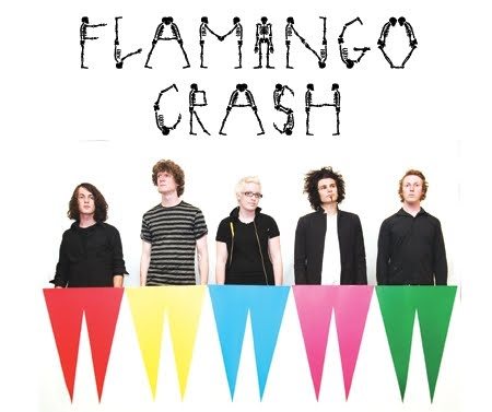 flamingo crash