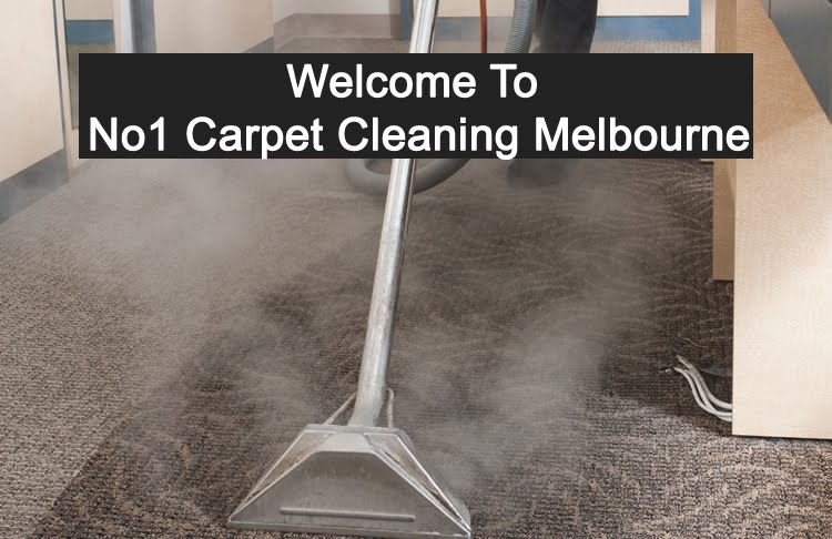 Woolworths carpet cleaner hire cost woolworths carpet cleaner hire gallery of equipment hire melbourne press steam cleaning engine partment carpet cleaners for cleaner woolworths with woolworths carpet cleaner hire cost solutioingenieria Images