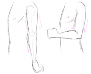 Male character noob 2b pro step 14 think of the arm as a zone where the muscles stand out depending on the position of the body if the arm is extended the biceps will be relaxed ccuart Gallery