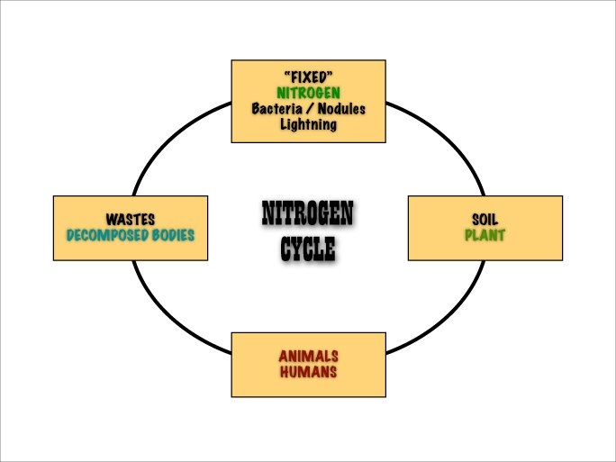 Earth Science Curriculum Natural Cycles