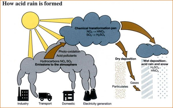 how acid rain develops spreads and destroys Very strong acids will burn if they touch your skin and can even destroy metals  acid rain is much, much weaker than this, never acidic enough to burn your skin.