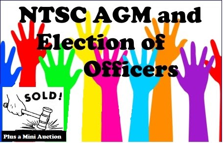 MINI AUCTION PLUS ANNUAL GENERAL MEETING AND EXECUTIVE ELECTIONS