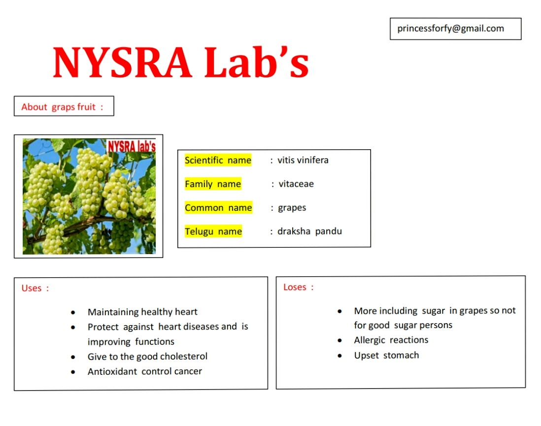 Fruits uses AND losses - Nysra lab's| 33 Scientific names uses