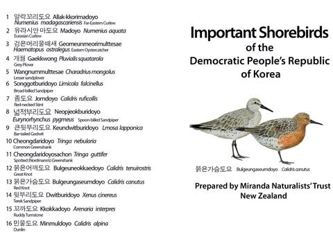 https://sites.google.com/site/nzdprksociety/_/rsrc/1244935928513/migratory-birds/DPRK%20Bird%20ID%20Guide%20cover%20.jpg