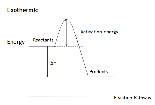 Exothermic Energy Diagram Stages Wiring Diagram Electricity